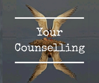 Your Counselling from the Exe Counsellor in Exmouth Maxine Reece